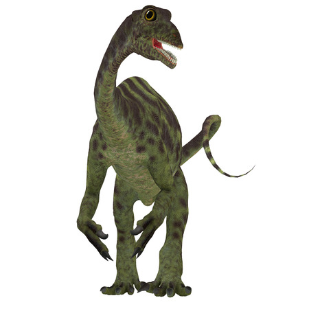 Anchisaurus Jurassic Dinosaur - Anchisaurus was a omnivorous prosauropod dinosaur that lived in the Jurassic Periods of North America, Europe and Africa.