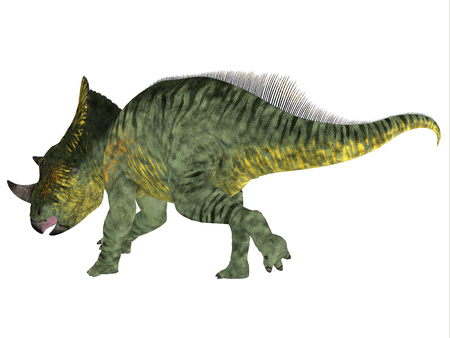 Brachyceratops dinosaur tail - Brachyceratops is a herbivorous Ceratopsian dinosaur that lived in Alberta, Canada and Montana, USA in the Cretaceous Period. Stock Photo