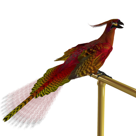 mythical phoenix bird: The Phoenix is a bird in Greek mythology that is long-lived and is reborn or regenerated over and over again. Stock Photo