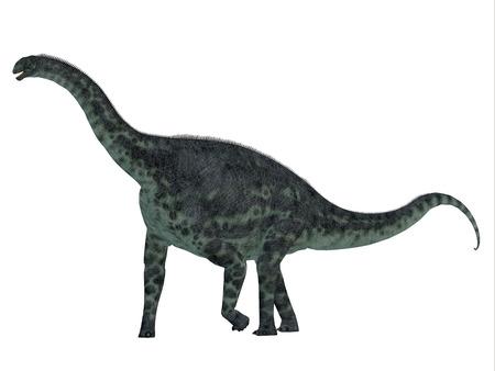 Cetiosaurus は、ジュラ紀にアフリカのモロッコに住んでいた草食の竜脚類恐竜です。 写真素材