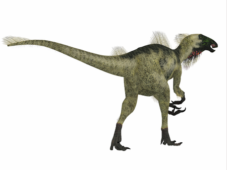 Beipiaosaurus was a herbivorous theropod dinosaur that lived in China in the Cretaceous Period. Stock Photo