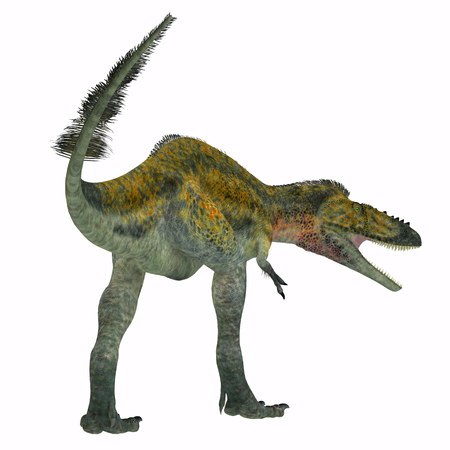 Alioramus Dinosaur Tail - Alioramus was a carnivorous theropod dinosaur that lived in Asia in the Cretaceous Period.