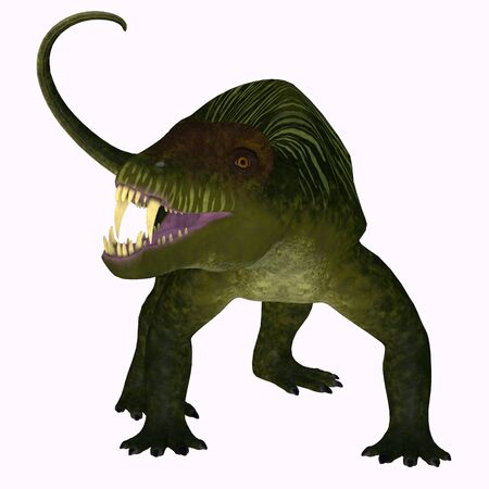 Doliosauriscus Dinosaur on White - Doliosauriscus is an extinct genus of therapsid carnivorous dinosaur that lived in Russia in the Permian Period.