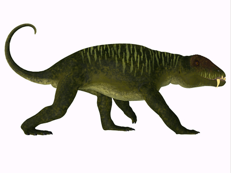 Doliosauriscus Dinosaur Side Profile - Doliosauriscus is an extinct genus of therapsid carnivorous dinosaur that lived in Russia in the Permian Period.