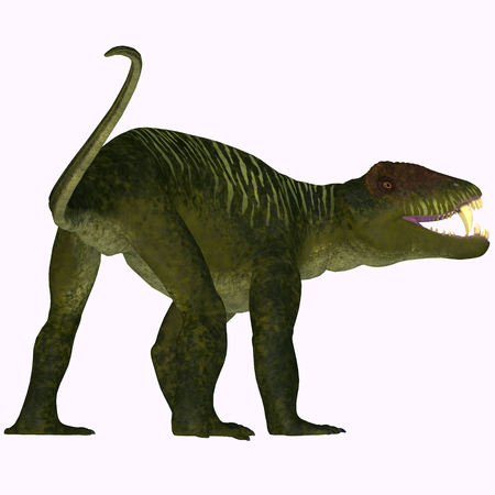 genus: Doliosauriscus Dinosaur Tail - Doliosauriscus is an extinct genus of therapsid carnivorous dinosaur that lived in Russia in the Permian Period.