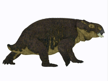 Placerias Dinosaur Tail - Placerias was a herbivorous dicynodont dinosaur that lived in Arizona, USA in the Triassic Period. Stock Photo