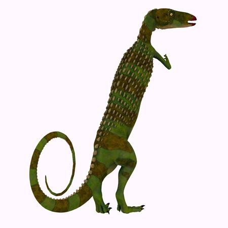 Scutellosaurus Dinosaur Tail - Scutellosaurus was an armored herbivore dinosaur that lived in Arizona, USA during the Jurassic Period.