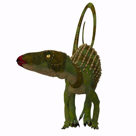 Scutellosaurus Dinosaur on White - Scutellosaurus was an armored herbivore dinosaur that lived in Arizona, USA during the Jurassic Period.