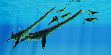 Styxosaurus attacks Dolichorhynchops - A group of Dolichorhynchops plesiosaurs scatter as Styxosaurus marine reptiles pursue them for their next meal.