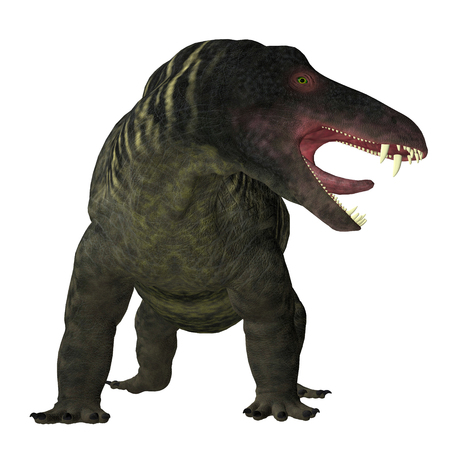 Jonkeria Dinosaur on White - Jonkeria truculenta was an omnivorous therapsid dinosaur that lived in South Africa during the Permian Period.