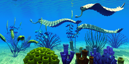 Opabinia in Cambrian Seas - Three Opabinia regalis animals hunt for prey on a reef of Cambrian Seas in the Paleozoic Era. Stock Photo