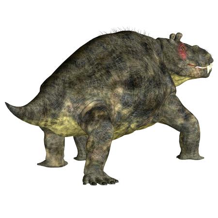 Estemmenosuchus uralensis Dinosaur Tail - Estemmenosuchus uralensis was an omnivorous therapsid dinosaur that lived in the Permian Period of Russia.