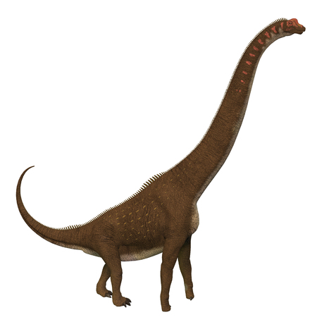 Giraffatitan was a herbivorous sauropod dinosaur that lived in Africa during the Jurassic Period.