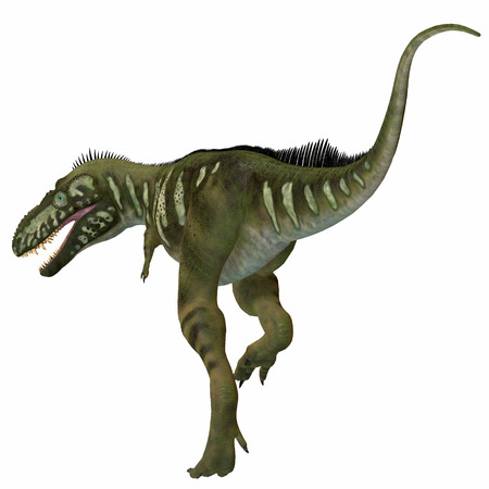 Bistahieversor Dinosaur Tail - Bistahieversor was a carnivorous theropod dinosaur that lived in New Mexico, North America during the Cretaceous Period. Stock Photo