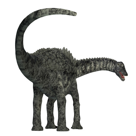 Ampelosaurus Dinosaur Tail - Ampelosaurus was a herbivorous sauropod dinosaur that lived in Europe during the Cretaceous Period. Stock Photo
