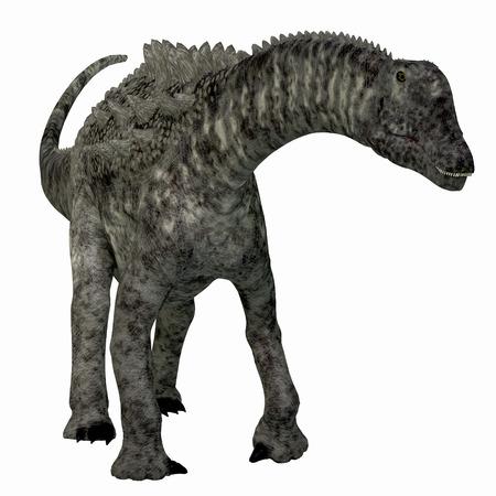 Ampelosaurus Dinosaur Front - Ampelosaurus was a herbivorous sauropod dinosaur that lived in Europe during the Cretaceous Period.