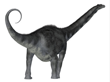 Argentinosaurus Dinosaur Tail - Argentinosaurus was a herbivorous sauropod dinosaur that lived in Argentina during the Cretaceous Period. Stock Photo