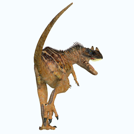 Ceratosaurus Dinosaur Tail - Ceratosaurus was a theropod carnivorous dinosaur that lived in North America during the Jurassic period.