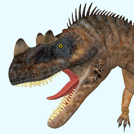 Ceratosaurus Dinosaur Head - Ceratosaurus was a theropod carnivorous dinosaur that lived in North America during the Jurassic period.