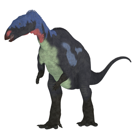 Camptosaurus Dinosaur on White - Camptosaurus was a herbivorous ornithischian dinosaur that lived in North America during the Jurassic Period.