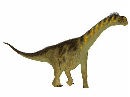 Camarasaurus Dinosaur Side Profile - Camarasaurus was a herbivorous sauropod dinosaur that lived in North America during the Jurassic Period. Stock Photo