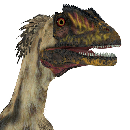 Deinonychus Dinosaur Head - Deinonychus was a carnivorous theropod dinosaur that lived in North America during the Cretaceous Period.