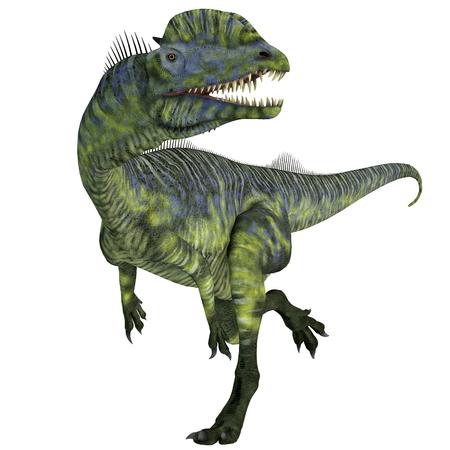 Dilophosaurus Dinosaur Running - Dilophosaurus was a large carnivorous theropod dinosaur that lived in Arizona, USA during the Jurassic Period. Stock Photo