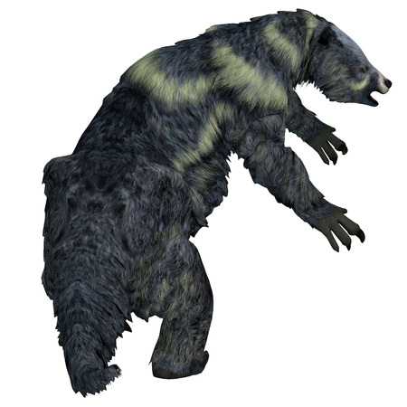 Eremotherium Sloth Tail - Eremotherium was a herbivorous Giant Ground Sloth that lived in North and South America during the Pleistocene Period. Stock Photo