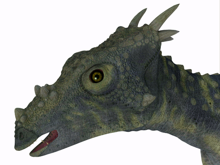 Dracorex Dinosaur Head - Dracorex was a herbivorous biped dinosaur that lived in North America during the Cretaceous Period.