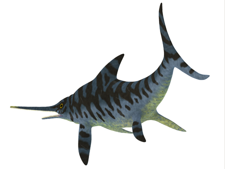 Eurhinosaurus Reptile Tail - Eurhinosaurus was a carnivorous Ichthyosaur reptile that lived in Europe during the Jurassic Period. Imagens