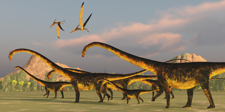Barosaurus Dinosaur Herd - A Barosaurus dinosaur herd watches over its youngsters as two Pteranodon reptiles fly over.