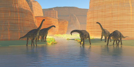 Cetiosaurus Canyon River - A herd of Cetiosaurus dinosaurs drink from a canyon river during the Jurassic Period of Morocco, Africa.