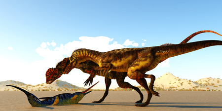 Dilophosaurus Dinosaurs find Eurohinosaurus - A Eurohinosaurus marine reptile lays helpless on the tidal flats as the sea goes out as two Dilophosaurus theropod dinosaurs look at him as their next meal.