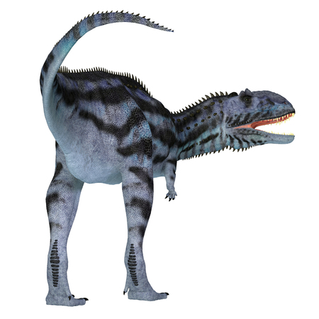 Majungasaurus Dinosaur Tail - Majungasaurus was a carnivorous theropod dinosaur that lived in Madagascar during the Cretaceous Period.