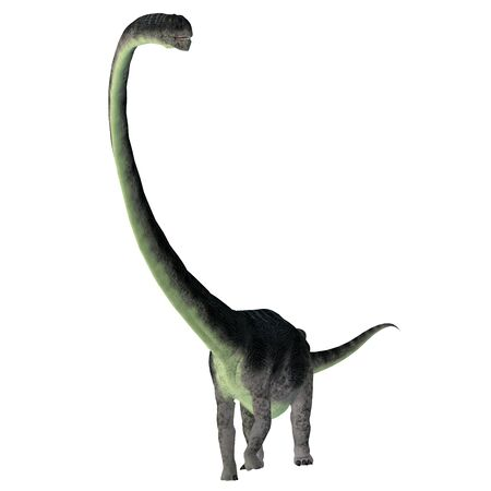 Omeisaurus Dinosaur Front - Omeisaurus was a herbivorous sauropod dinosaur that lived in China during the Jurassic Period. Stock Photo