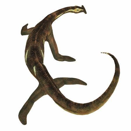 Atopodentatus Marine Reptile Tail - Atopodentatus was a herbivorous semi-aquatic marine reptile that lived in Triassic Seas of China. Фото со стока