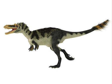 Alioramus altai Side Profile - Alioramus altai was a theropod carnivorous dinosaur that lived in Mongolia during the Cretaceous Period.