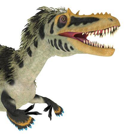 Cabeza de dinosaurio Alioramus altai - Alioramus altai fue un dinosaurio carnívoro terópodo que vivió en Mongolia durante el período Cretácico.
