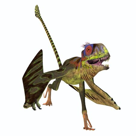Peteinosaurus Reptile Running - Peteinosaurus was a carnivorous flying pterosaur that lived in Italy during the Triassic Period.