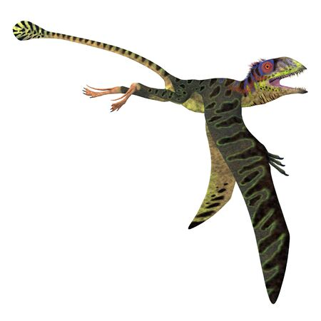 Peteinosaurus Reptile Wings Down - Peteinosaurus was a carnivorous flying pterosaur that lived in Italy during the Triassic Period.