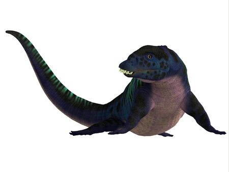 Placodus Reptile Head - Placodus was a carnivorous marine reptile that lived in Europe and Chinas ancient seas during the Triassic Period. 版權商用圖片