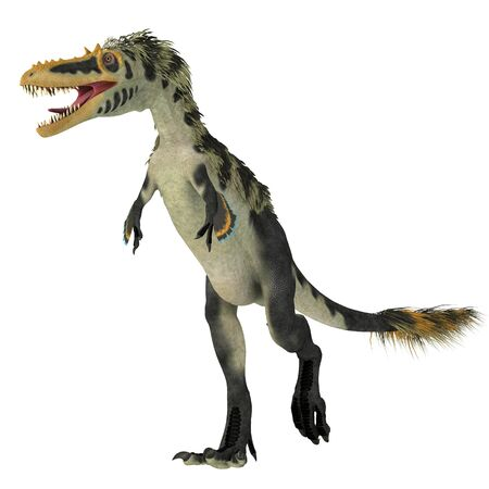 Alioramus altai Dinosaur on White - Alioramus altai was a theropod carnivorous dinosaur that lived in Mongolia during the Cretaceous Period.