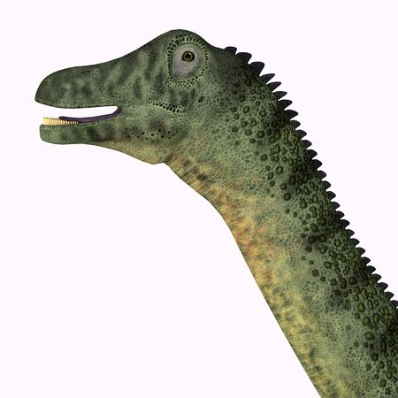 Saltasaurus was a herbivorous sauropod dinosaur that lived in Argentina during the Cretaceous Period.