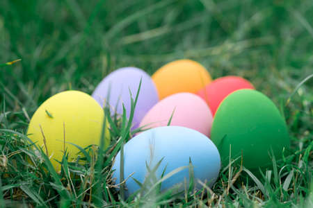 The colorful easter eggs in the nest with green grasses background of front yard Stock Photo