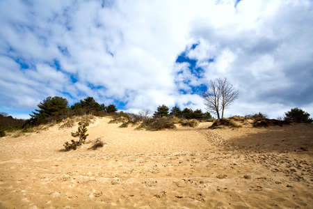 sandy hill with trees on horizon and blue sky with clouds Stock Photo