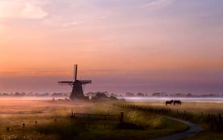 windmill and horses on pasture at sunrise