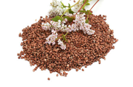 buckwheat grain and flowers on white background photo