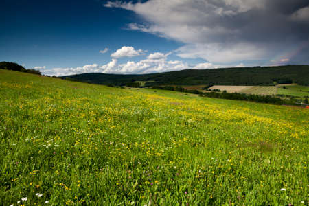 flowering summer meadows in mountains before rain and rainbow photo