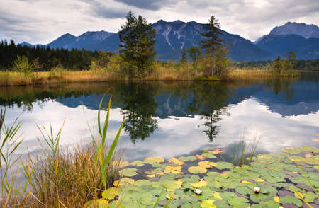 wild water lily on Barmsee lake in Bavarian Alps Stock Photo - 15421377