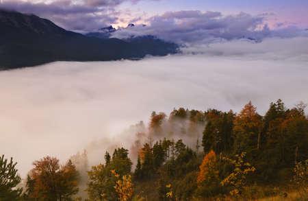 Nebel �ber den herbstlichen Wald im Hochgebirge Lizenzfreie Bilder